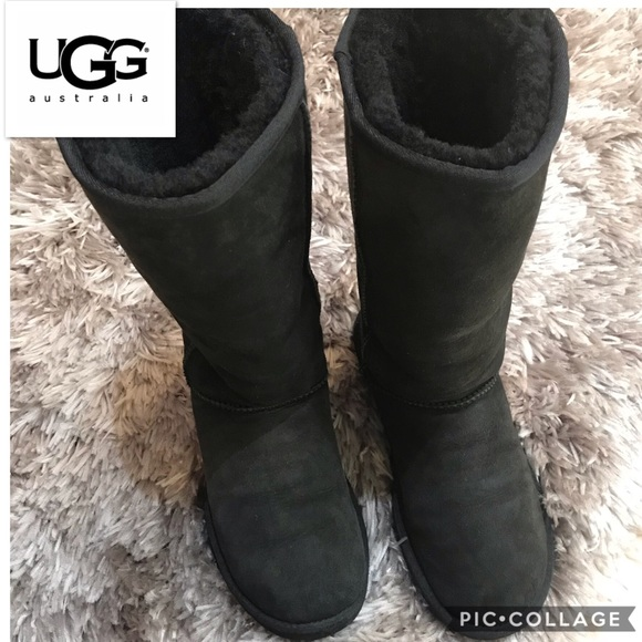 8887add5d77 UGG®Classic II Genuine Shearling Lined Tall Boot